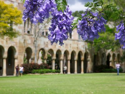 Faculty announces three new professorships