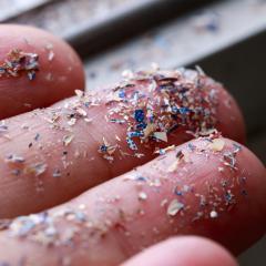 micro plastics on fingers